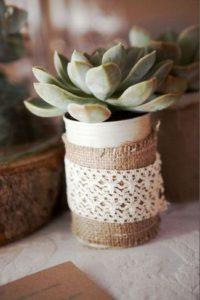 succulents in tin with hessian decor
